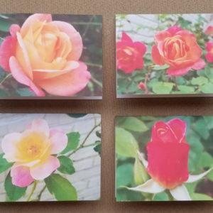 Harris Garden Cards