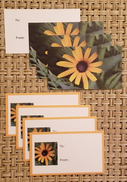 Daisy gift tags- Harris Garden Cards