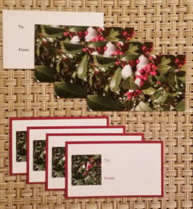 Holly gift tags- Harris Garden Cards