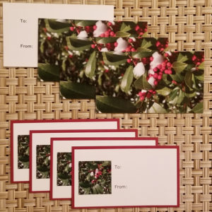 Holly gift tags- Harris Garden Cards
