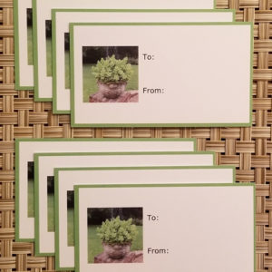 Sedum planter gift tags- Harris Garden Cards
